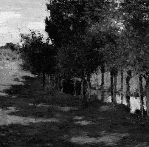 black and white landscape values