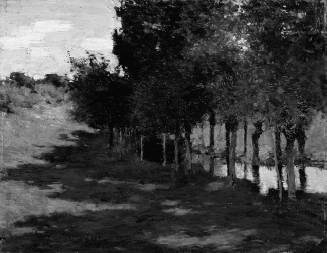 black and white landscape values